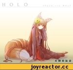 HOLO Spaces and Wolf