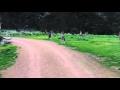 Кенгуру на дороге.Kangaroo on the road,Entertainment,animals fun драки fight кошки cats игры собаки dogs приколы 2015,приколы за неделю,смешные видео 2015,fail compilation,vine compilation,сборник приколов,лучше,приколы, лучшие приколы, сливки приколы, смешные видео, приколы с людьми, приколы с живо