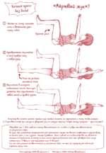 «Лёрип&лй ЖЫК»? (Т) Яяг*П)е на спину, согните ноги и вЫллпЯкшпе руки Перед со5ой г* Прямой угол (2) Одновременно опускайте К полу праву*) ногу и левую руку. Нога недолжкд кассщЬсЯ пола (2) РеркитщесЬ в исходкое Положение, после Чего проделайте Эк\о упражнение с левой ногой и правой рукой. Ло